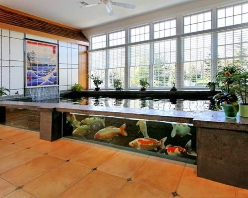 Koi fish ponds in cyprus koi pond ideas cyprus koi for Indoor koi pond designs